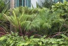 Ormond Beach and coastal landscaping 3
